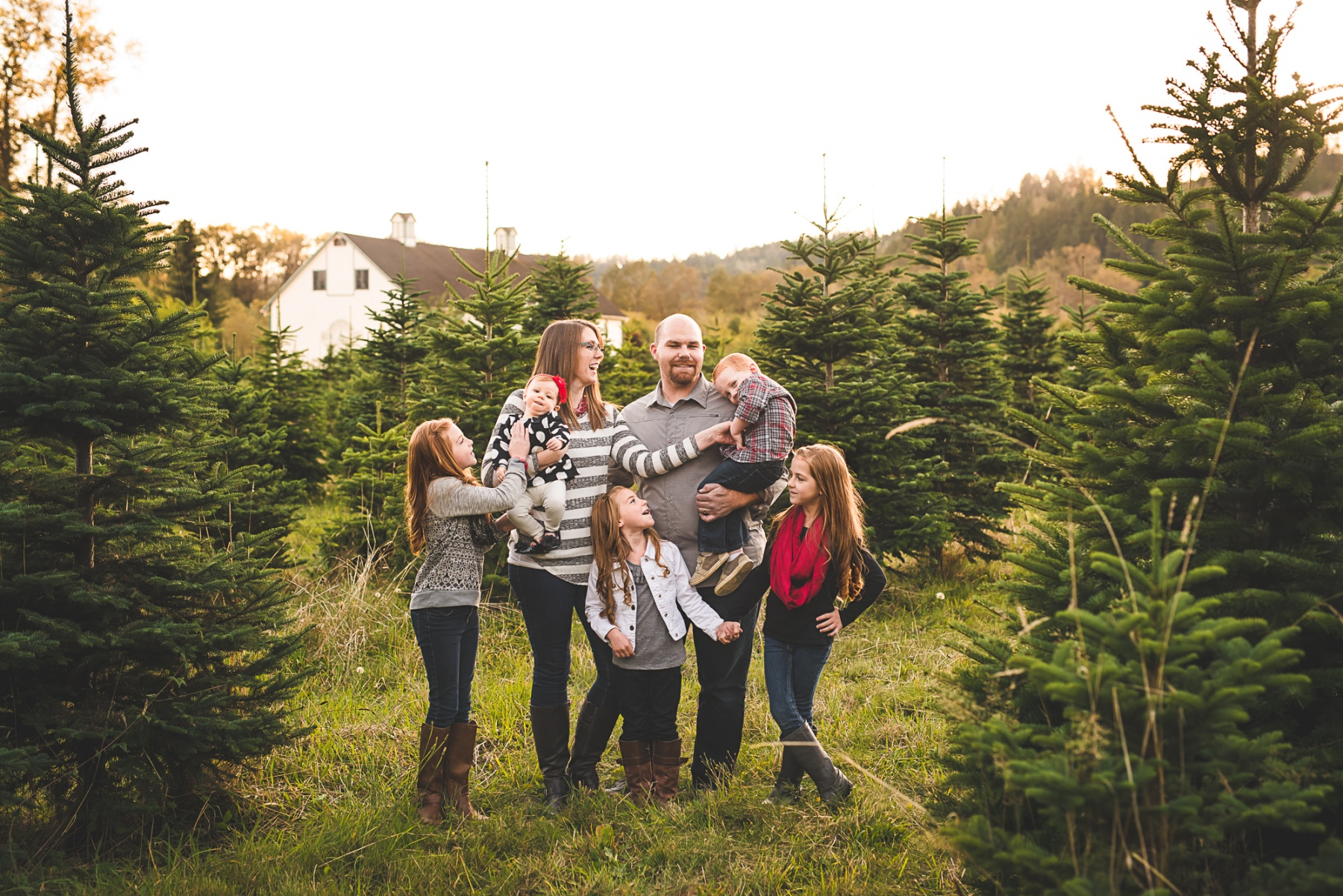 A Seattle Family Photo at a Christmas Tree Farm