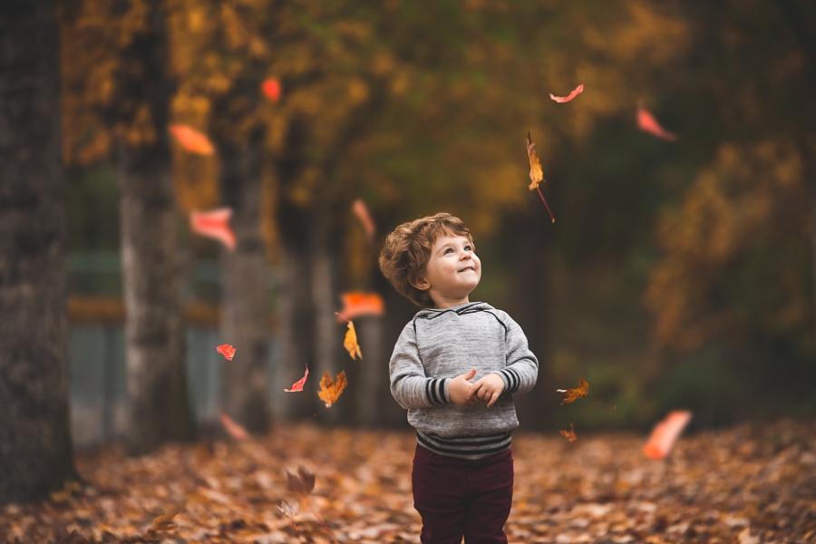 Young boy surrounded by floating fall colored leaves by Seattle Family Photographer